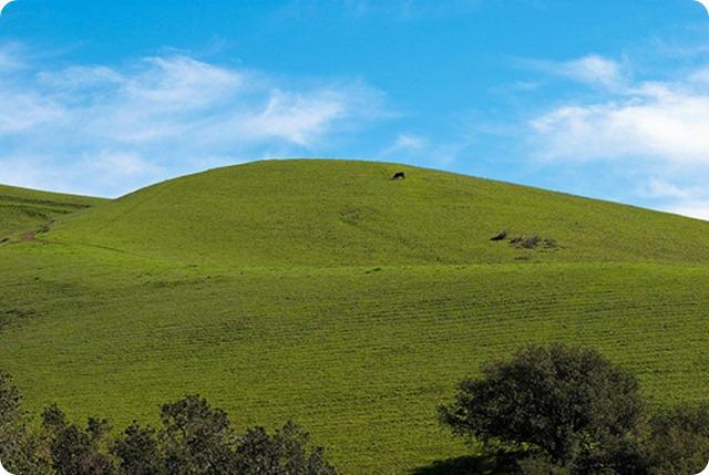 Green-hill_thumb