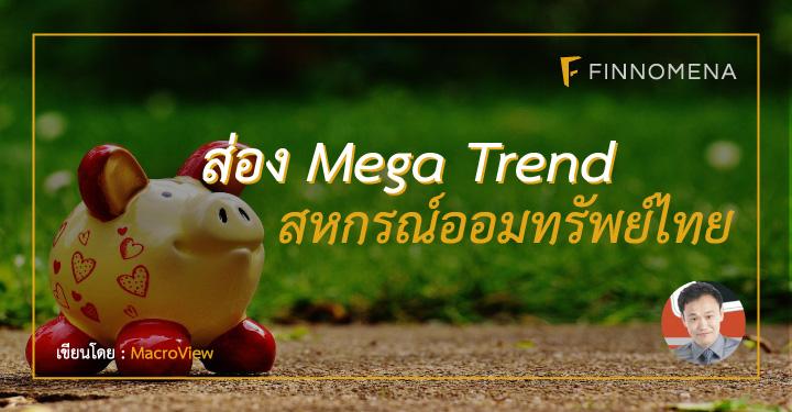 cooperative-mega-trend