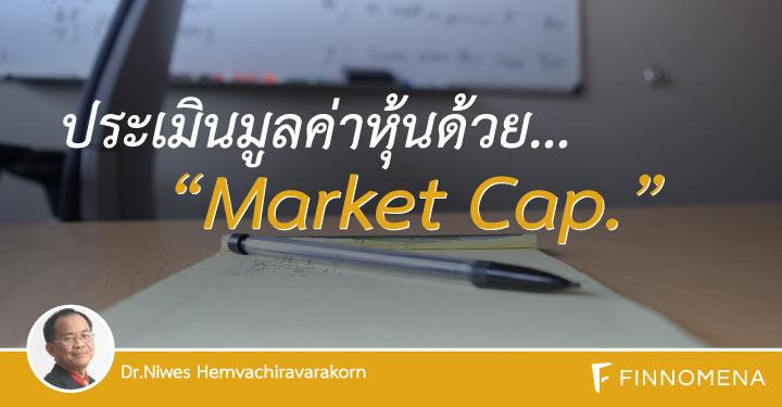 dr-niwes---valuation-by-market-cap