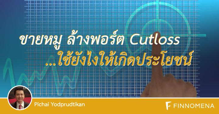 sale-stock-port-cutloss