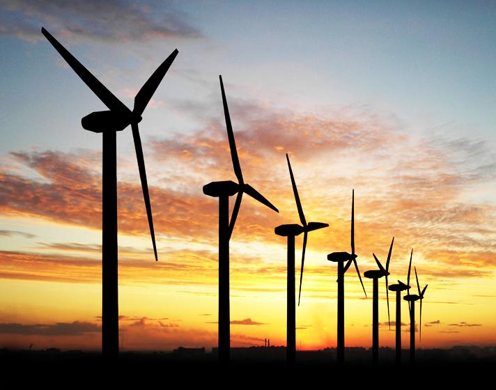 wind-turbine-painting-bird-deaths