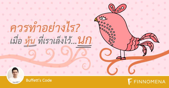 buffett-code-stock-bird