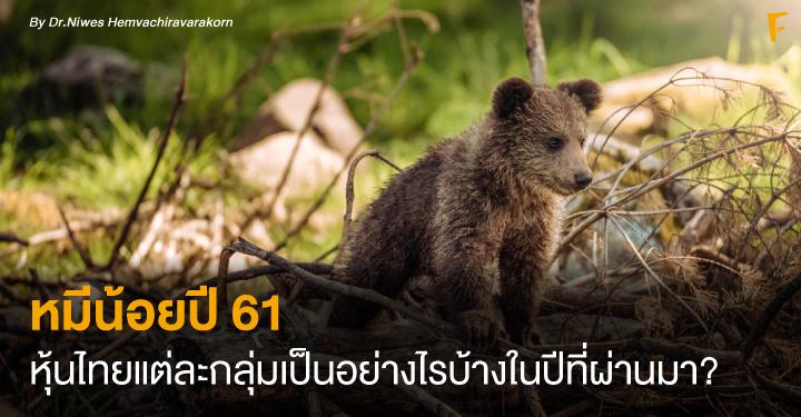 หมีน้อยปี 61