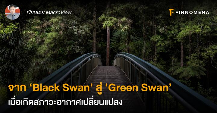 จาก 'Black Swan' สู่ 'Green Swan'