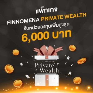 Promotion-Investment-Package