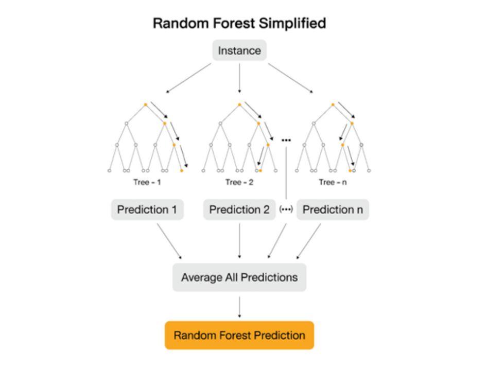 random forests model machine learning